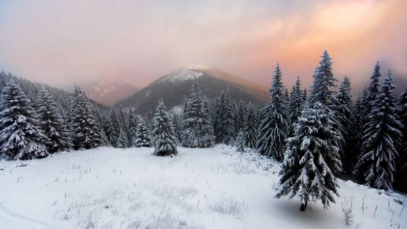 Новорычний та рыздвяний тури в Карпати