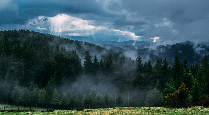 Карпати на травневі свята - туман