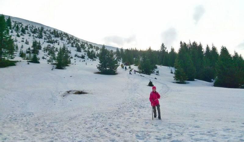 Синевир - сніг в травні