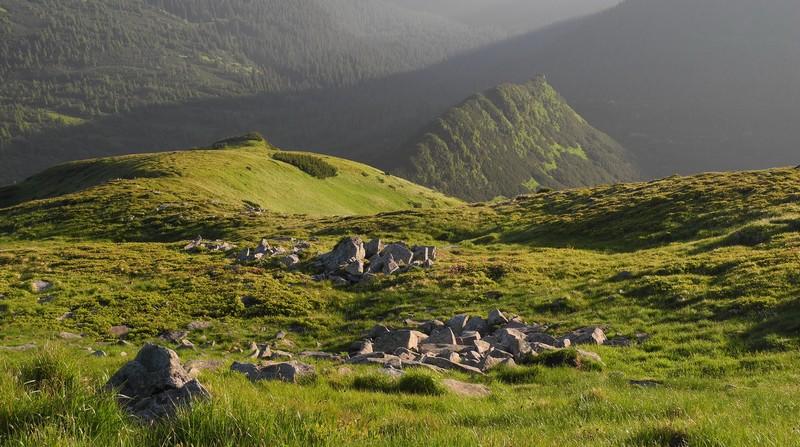 Пейзаж Чорногірського масиву