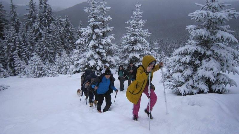 Група туристів прямує на зимову Говерлу