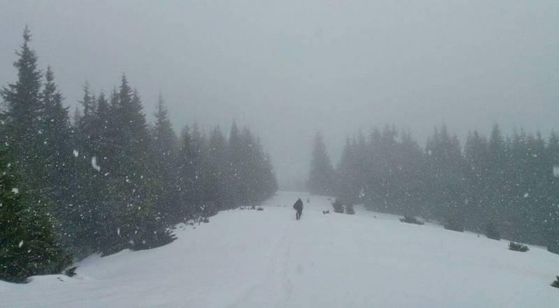 Туман зимой в Карпатах